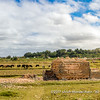 Mud brick kilns between the rice fields in the outskirts of Antananarivo, Madagascar