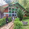 Tonga Soa (Welcome): visitors' centre of the Analamazaotra Special Reserve, Madagascar