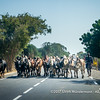 A local herder blocks with his herd of zebu the  national road no. 9, near Ifaty, Madagascar