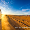 Driving down the dusty gravel road in the evening sun