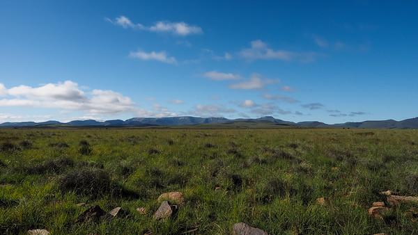 Mountain Zebra NP