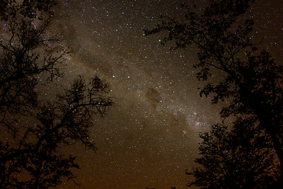 A star-studded night sky is guaranteed during the winter months in rural Gaza Province, Mozambique.