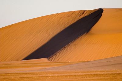 Skeleton Coast dune