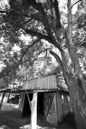 Wagon Shack Some photos just scream for Black and White! These Mississippi Delta photos are no exception. Great southern buildings and architecture from our past and present.