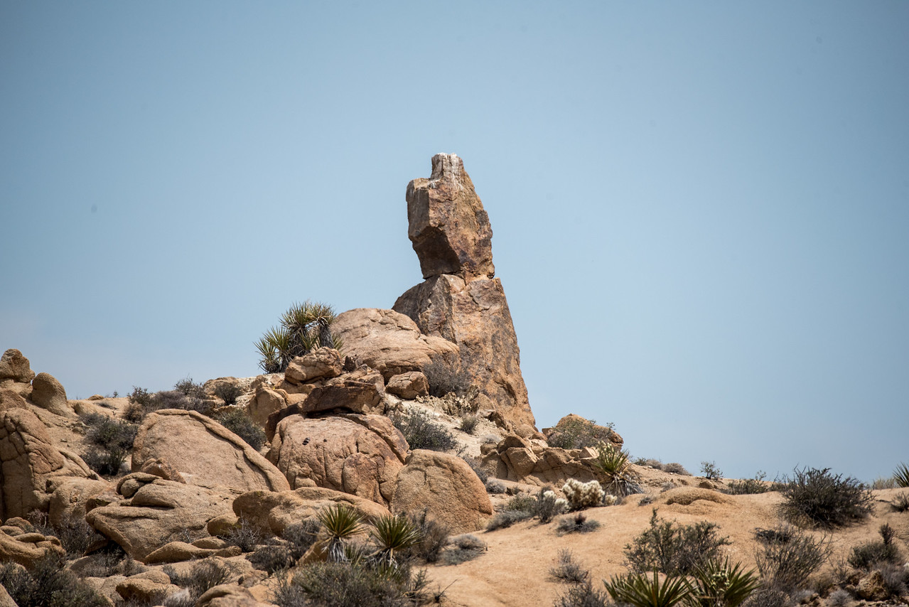 Rock formation that resembles a man carrying a tray, Cottonwood Springs