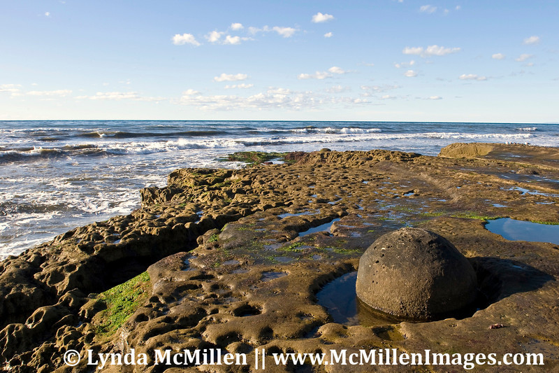 Marvels of nature: A perfectly rounded sea boulder nestled in stone with moat slowly carved by tidal sand.