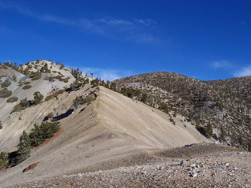ridge to w. baldy