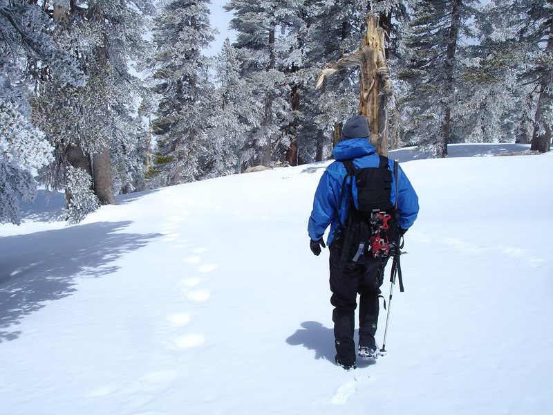 We followed what we believed to be Rick Kent's snowshoe tracks.
