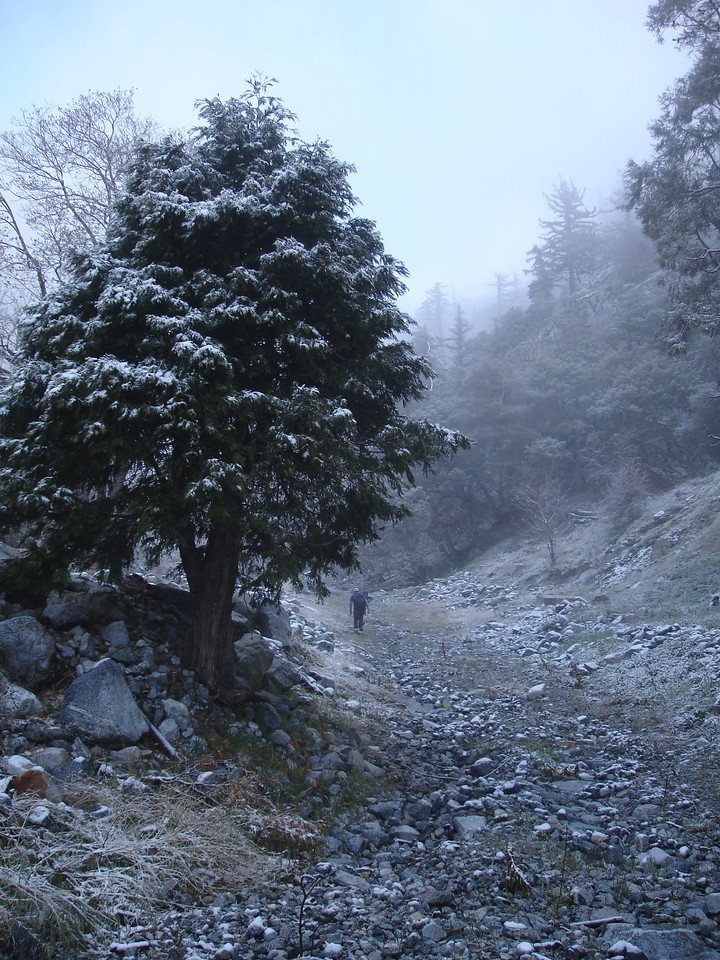 Light frosting of snow from the night before in Deer Canyon.