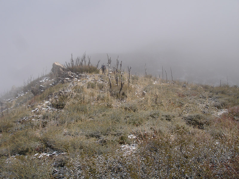 "On the South Ridge, Rick is barely visible. The vegetation is fast recovering from the devestation  of the <a href=""http://www.incidentcontrol.com/grandprixfire/index.html"" target=""_blank"">Grand Prix Fire</a> initially started October 21, 2003."
