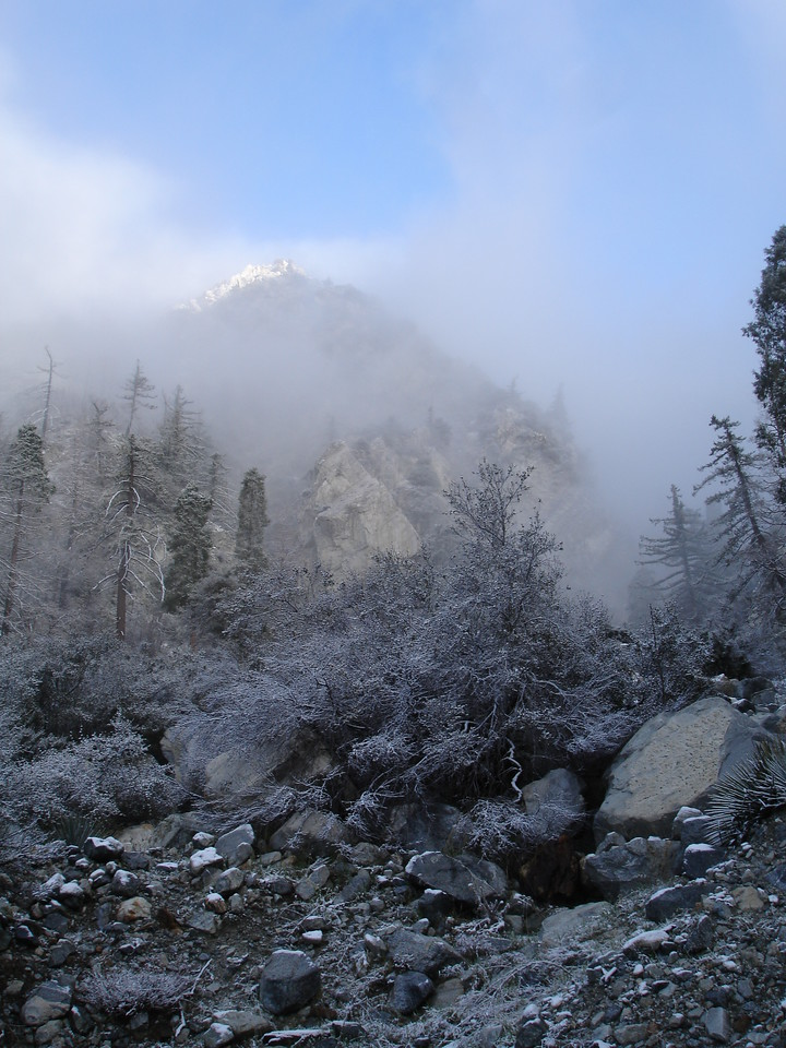 Deer Canyon. We caught a momentary glimpse of a snow capped ridge.