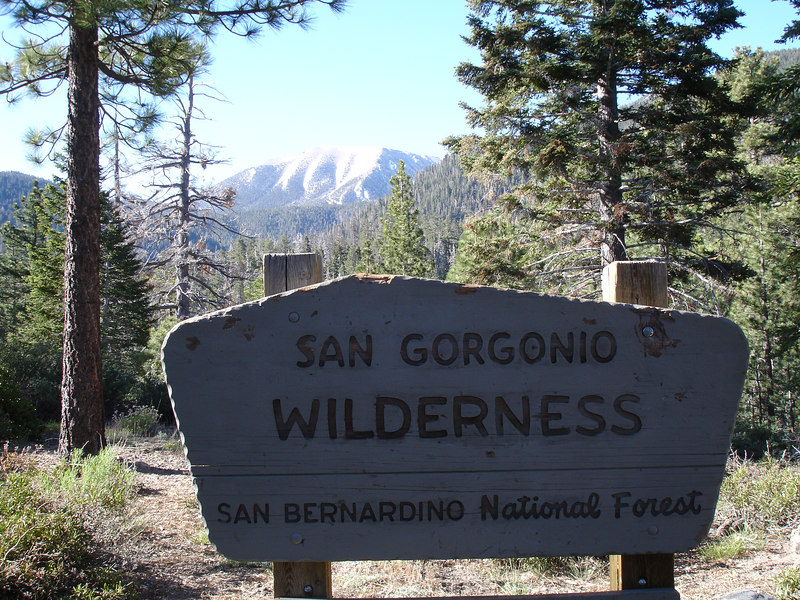 San Gorgonio Wilderness : South Fork : Dry Lake : San Gorgonio Mountain : Dollar Lake