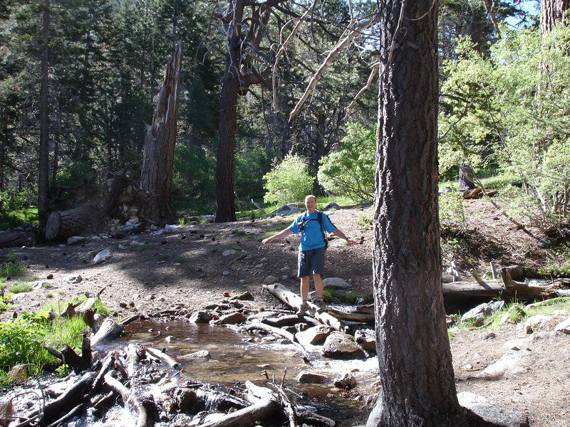 Crossing a creek which originates from springs in South Fork Meadows.<br /> <br /> San Gorgonio Wilderness : South Fork : Dry Lake : San Gorgonio Mountain : Dollar Lake