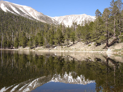 San Gorgonio Mountain - Via Dry Lake-Dollar Lake Loop