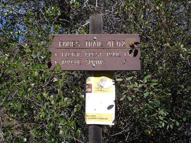 We took the 1.5 mile trail to Pacific Crest Trail.<br /> <br /> San Jacinto Wilderness: Desert Divide: Fobes Trail: Palm View Peak