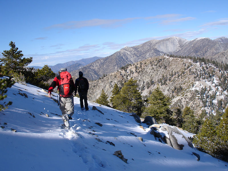 Descending Cucamonga Peak for Icehouse Saddle.