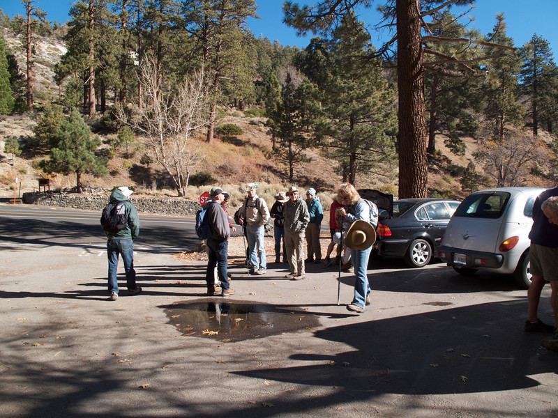 The parking lot for the Blue Ridge Trail trailhead is 3.7 miles west of Wrightwood on Highway 2 across the street from the Big Pines Ranger Station.