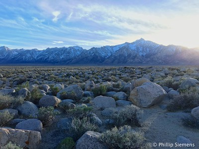 Mt. Williamson from west of Manzanar