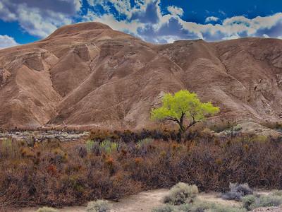 Willow Creek, China Ranch