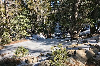 Hike from the top of the tram on Mt. Jacinto. Not just snow, but ice.