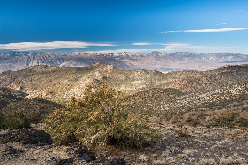 Sierra View