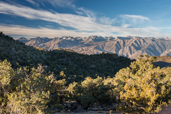 inyo national forest; sierra nevada; white mountains The view includes Split Mountain, the Thumb, and Middle and North Palisades among others.