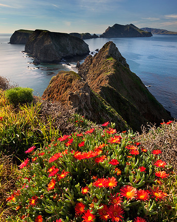 Anacapa Island, Channel Islands Naiional Park