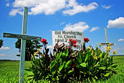 Some old churches and other items found inside the church that represent our southern faith. Delta flowers and springtime beauty make for great photos. These signs were found throughout the delta.