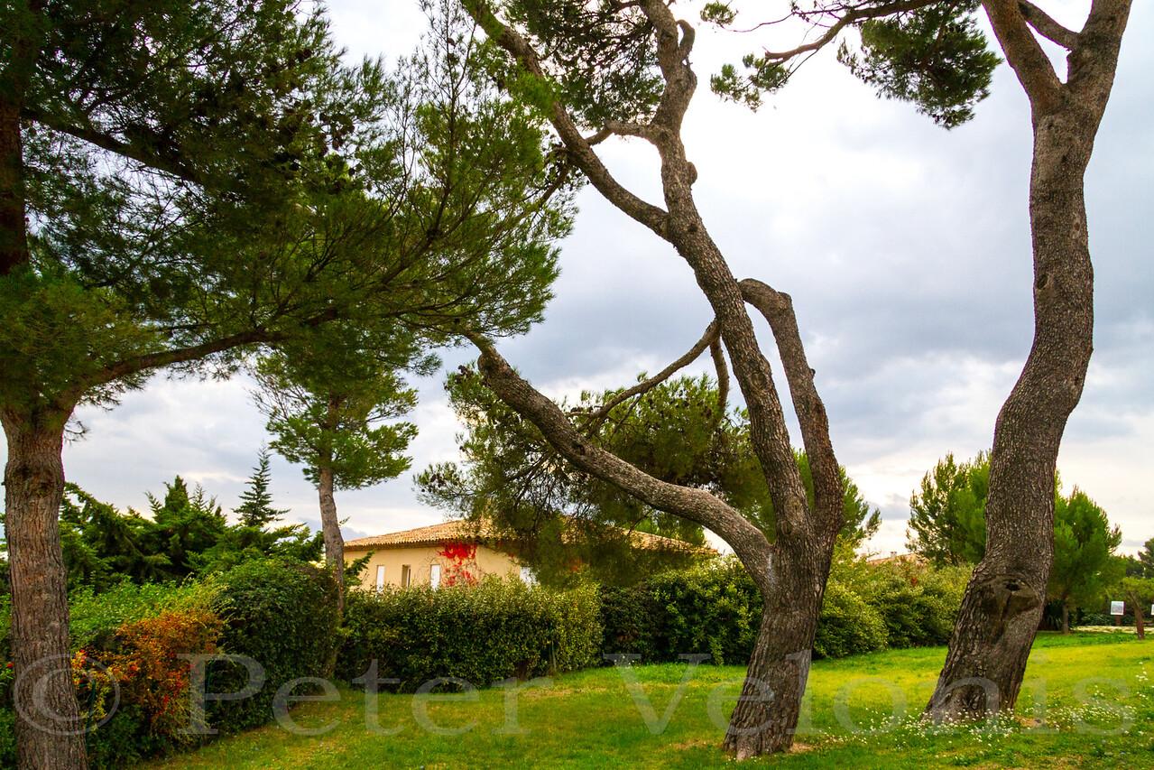 At the Domaine de la Marguerite where Cezanne painted Mt Saint-Victoire.