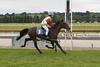 Saddle Race 1 004a