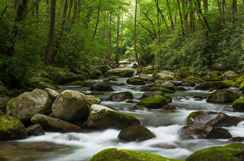 Summer on Big Creek