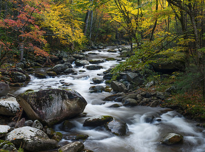 Middle Prong Creek in the Smokies