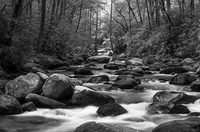 Big Creek in Black and White