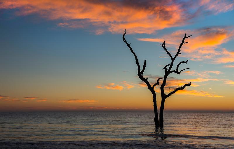 Atlantic Sunrise on Hunting Island