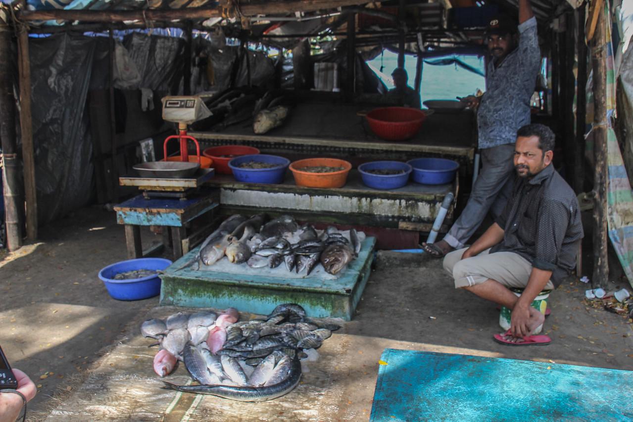 Kochi Waterfront