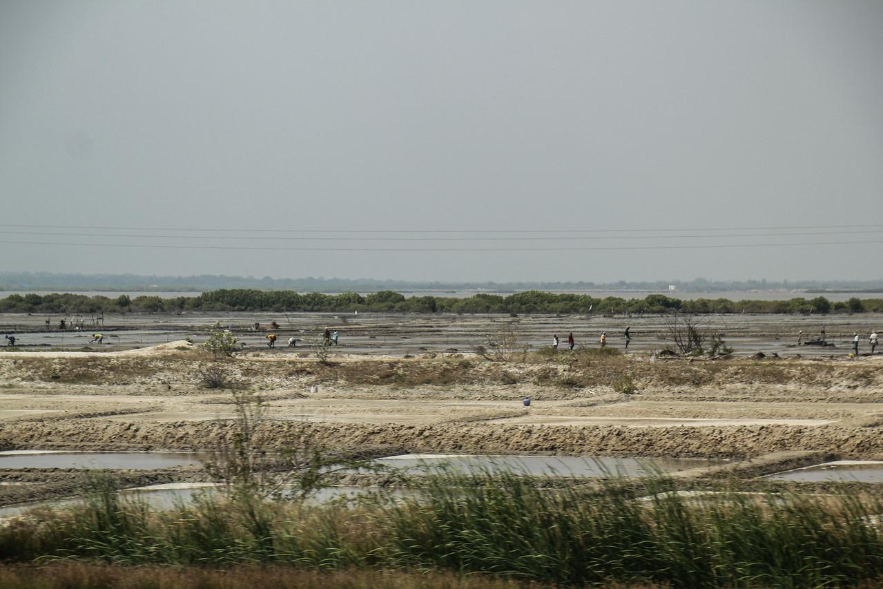 Salt Pond in Tamil Nadu