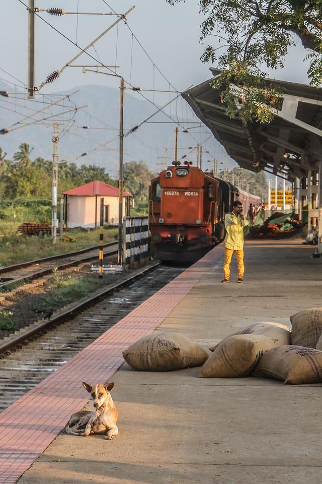 Golden Chariot at Madurai