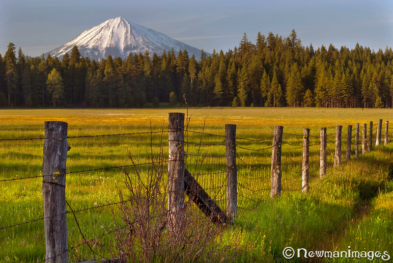 A Meadow and Mountain and a Fence