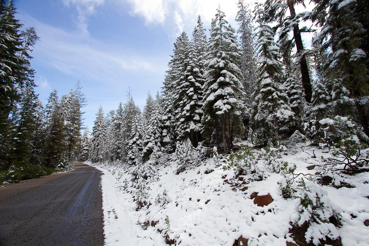 1 Snowy road to Fourmile Lake 1 IMG_9361