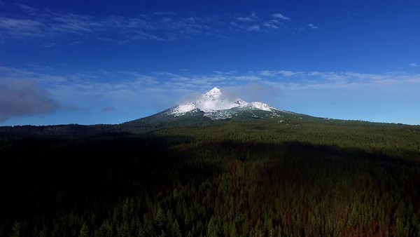 Mount McLoughlin from Fourmile Forest