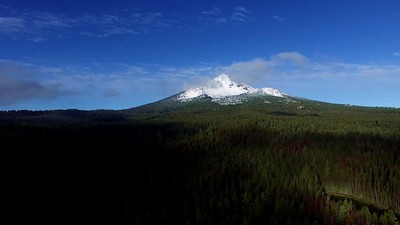 Mount McLoughlin from Fourmile Forest 2