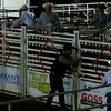Jasper Bulls and Broncs Oct 11,  2013