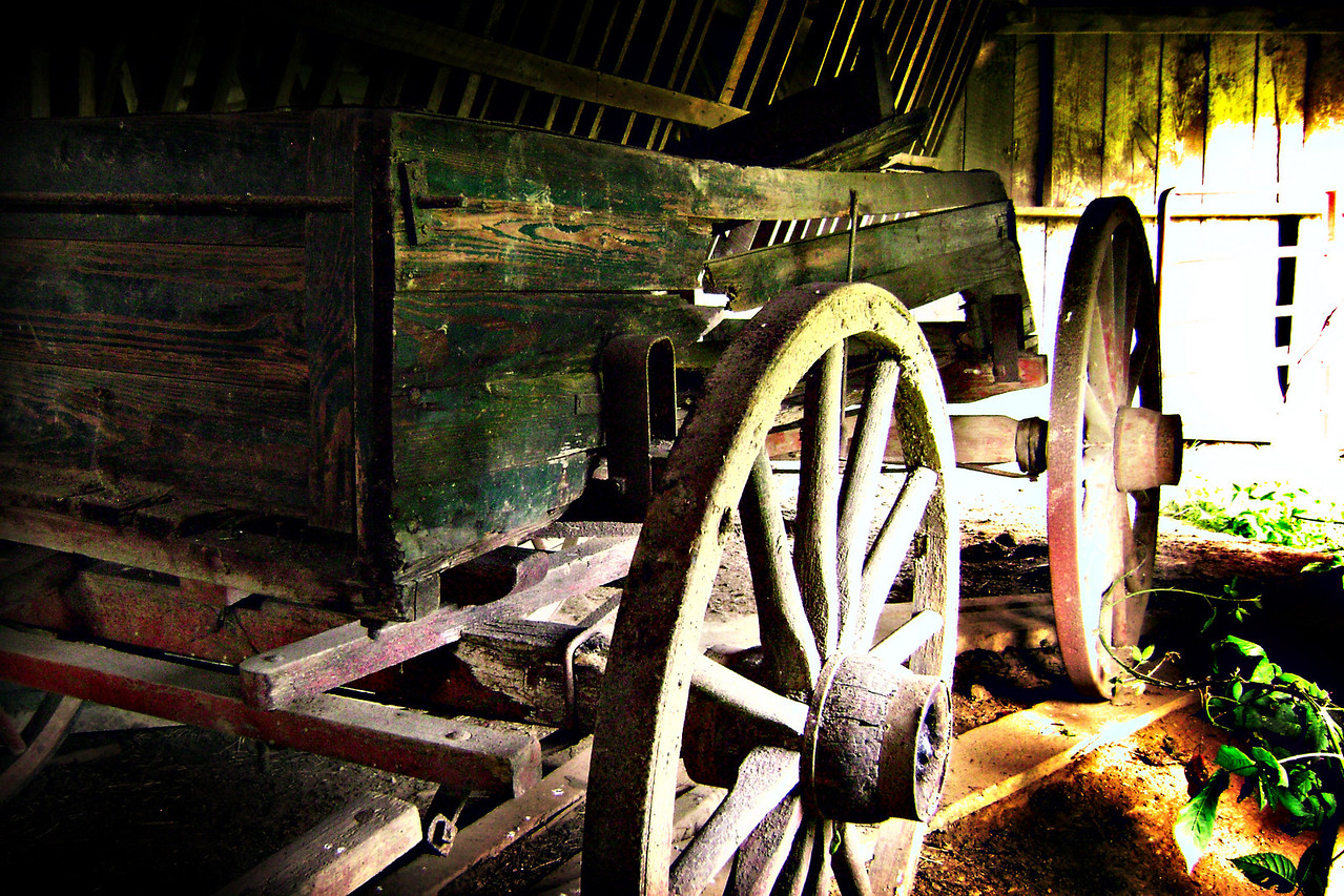 What a find! An old wagon in a barn where I expected nothing to be! Some things just scream southern when you first see them. Southern transportation comes in all forms. From tractors to mules, from trains to boats!