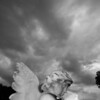 Angel weathers the storm Some photos just scream for Black and White! These Mississippi Delta photos are no exception. Southern cemetery's provide some great opportunities for photos.