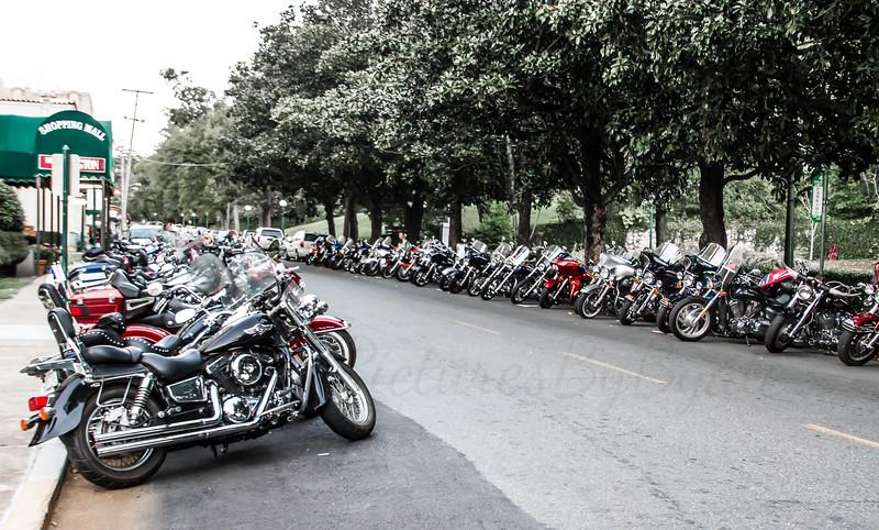Bikes at the Arlington