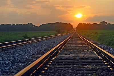 Oh what beautiful photos we get when we mix that Southern water with a southern sunrise or sunset! A beautiful delta sunrise or sunset! Southern transportation comes in all forms. From tractors to mules, from trains to boats!