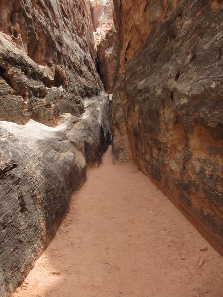 A hike just across the road from campground had slot canyons.