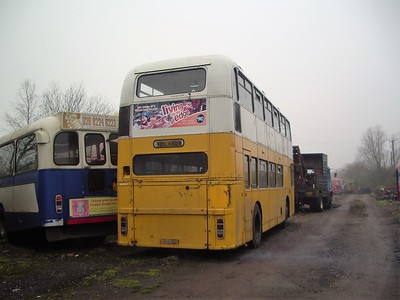 Denyer's, Stondon Massey (with Northern Irish Bristol RE TOI2316)