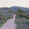 Daily Ranch, CA