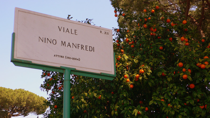 A roman street sign next to an orange tree weighed down by a spring harvest.